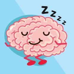 brain affects sleeping