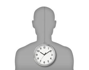 human internal clock