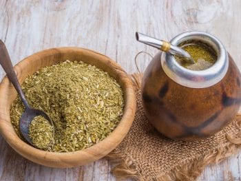 yerba mate as a nootropic