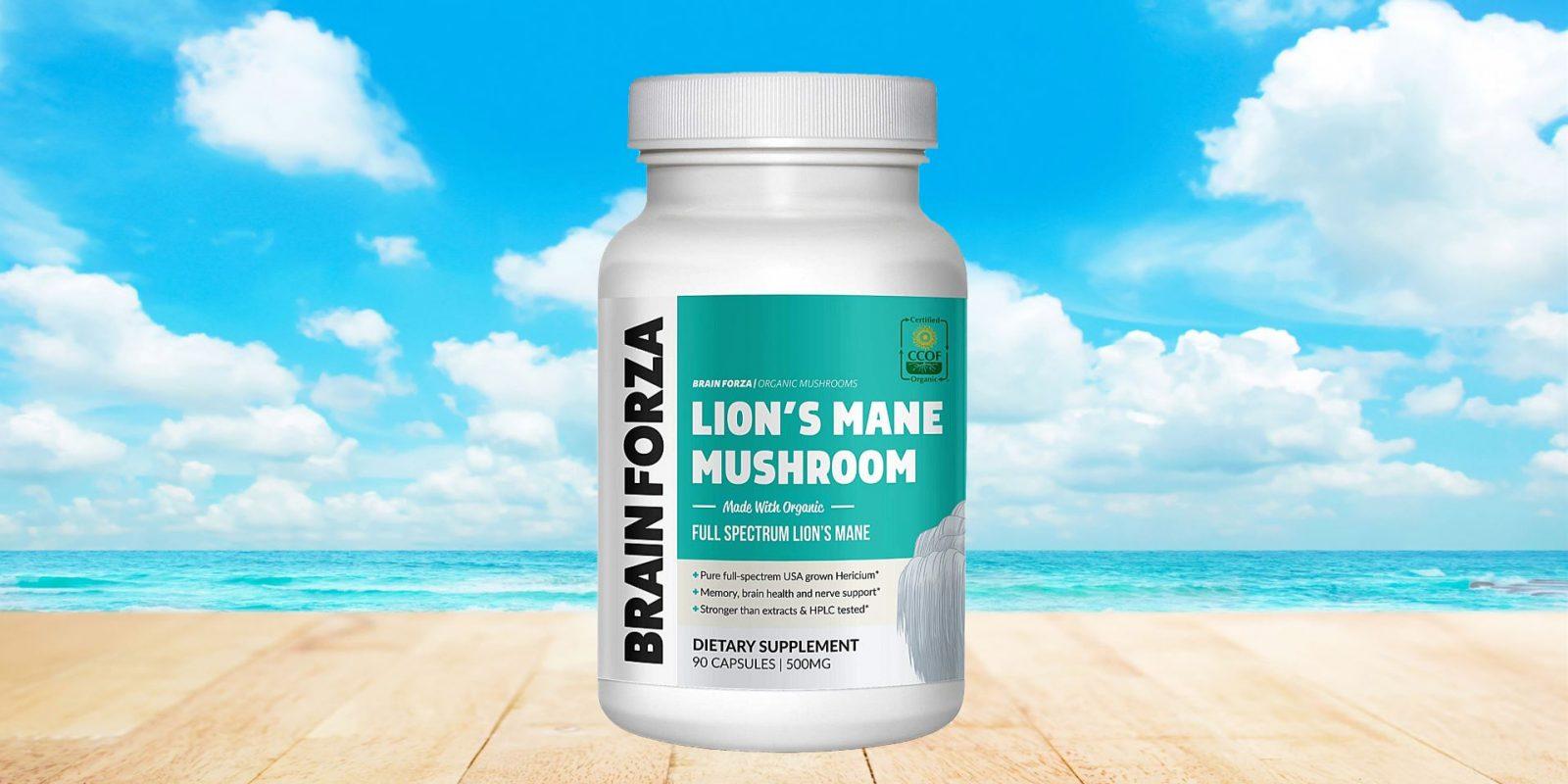 Brain Forza Organic Lion's Mane Mushroom