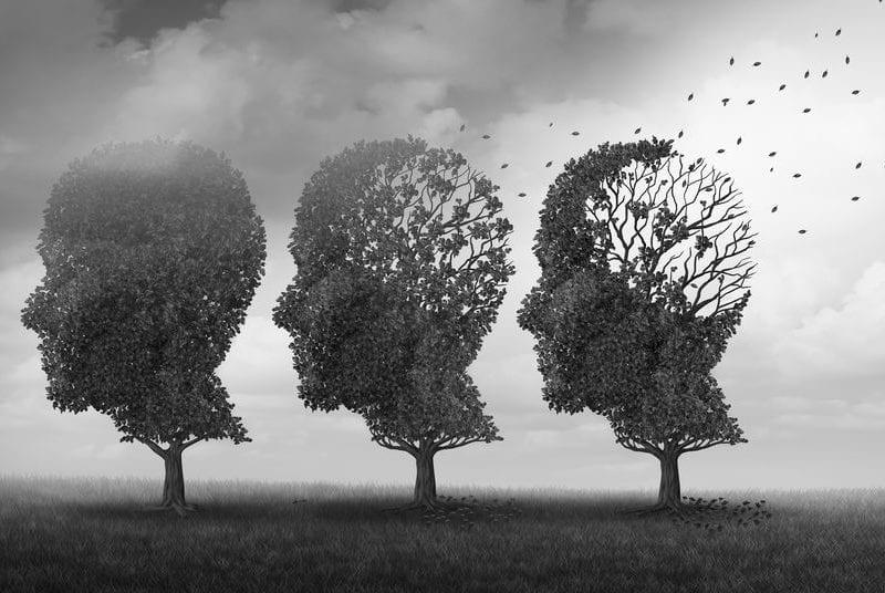 nootropics for aging brain