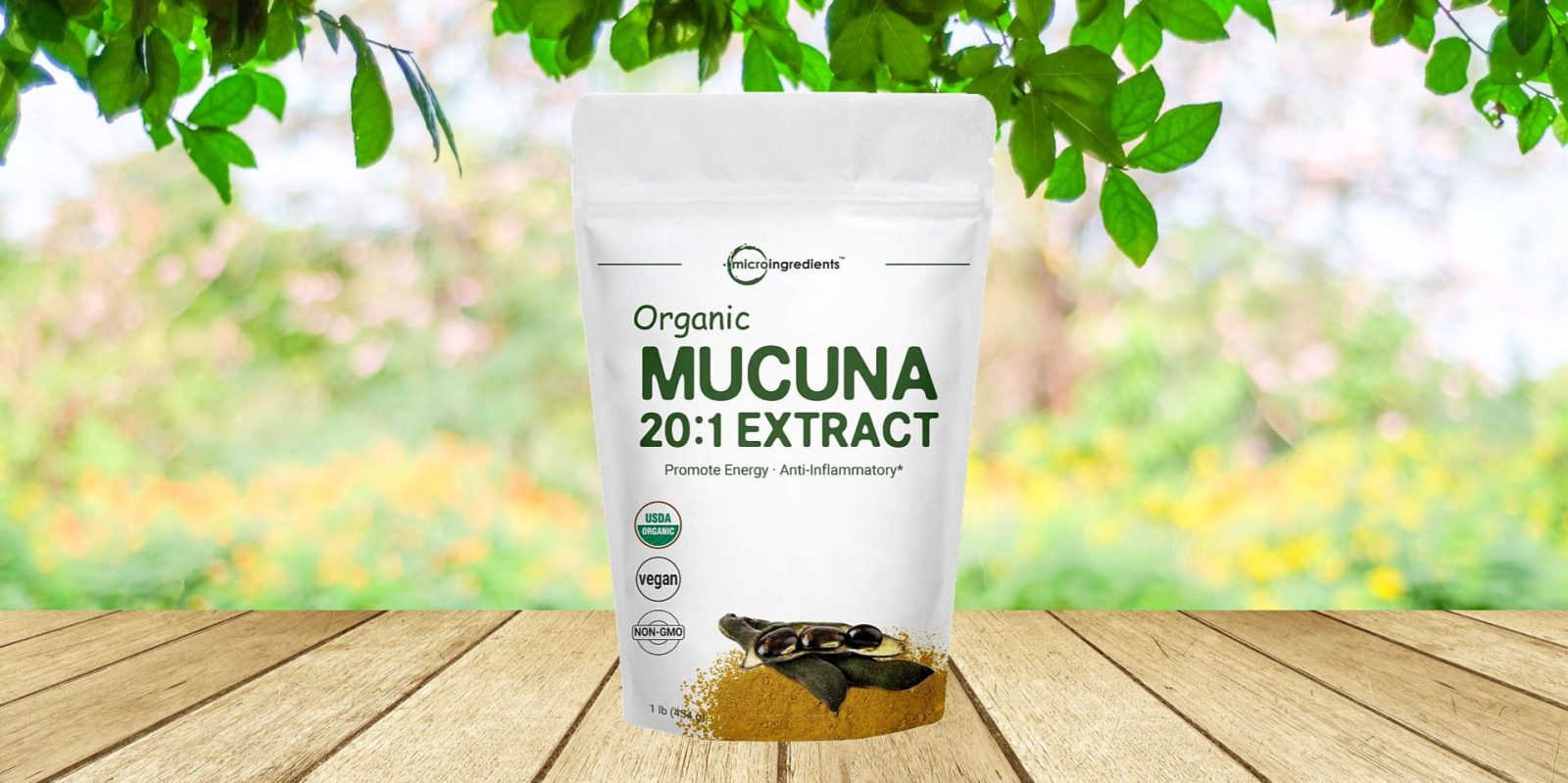 Micro Ingredients Mucuna Pruriens Extract Powder