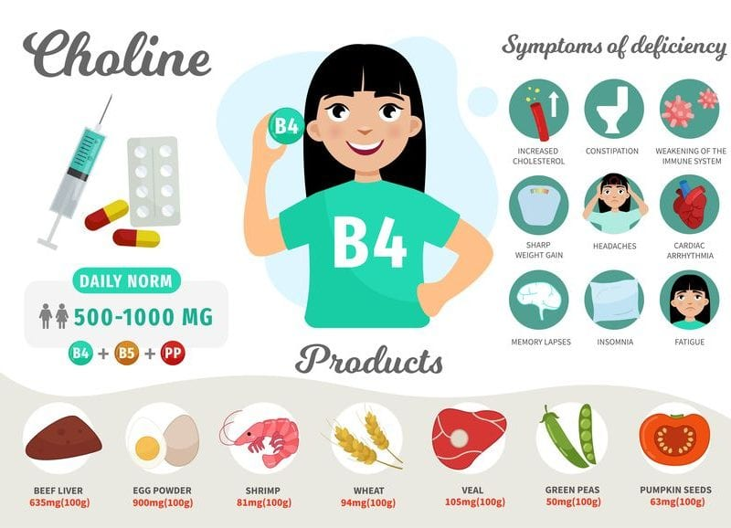 cdp choline supplement