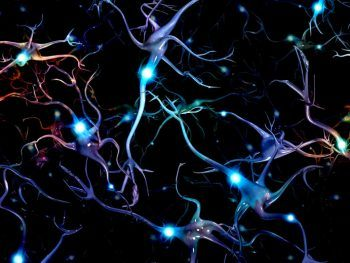 how to grow new brain cells with nootropics